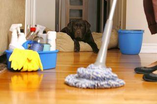 busco trabajos domesticos, tardes