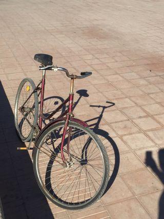 Bicicleta clásica MONTANA especial
