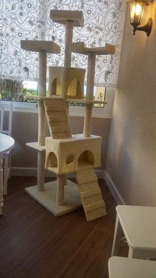 Árbol de gato