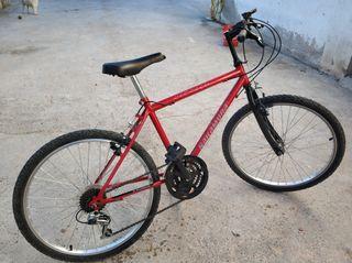 bici 24 pulgadas