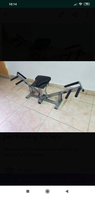 máquina flexiones