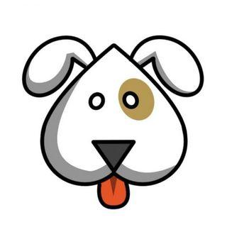 Paseo/Cuido perros y otros animales