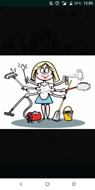limpieza jardines y pintura