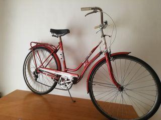 bicicleta paseo BH.