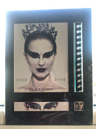 Black Swan - 35 mm Film