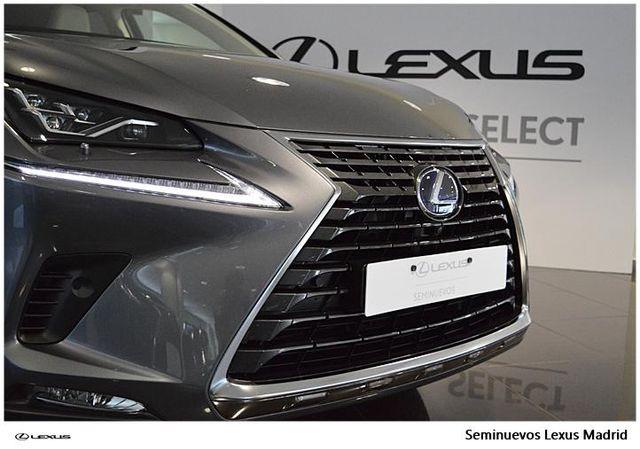 Lexus NX 2.5 300h Luxury 4WD
