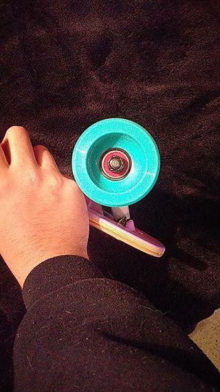 apollo longboard with reds bearings