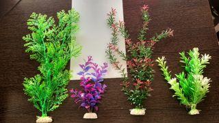 Plantas acuario