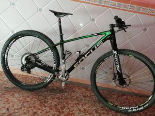 bicicleta mtb 29 focus Raven