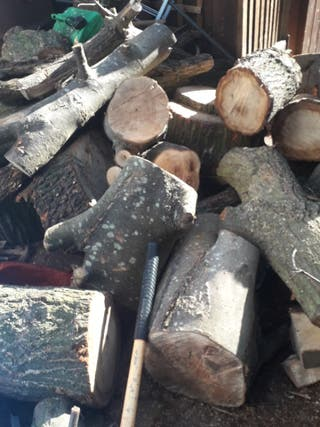 burning wood logs
