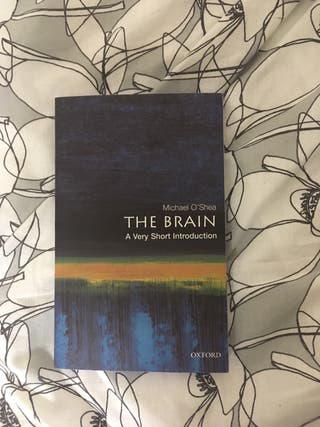 The brain : a very short introduction