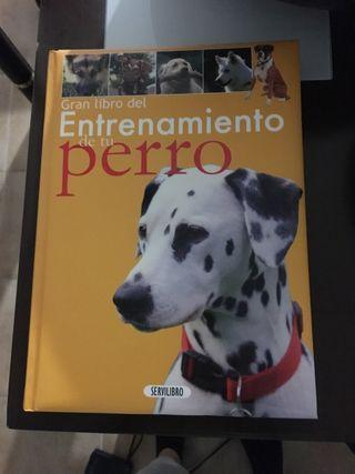 Libro entrenamiento de perros