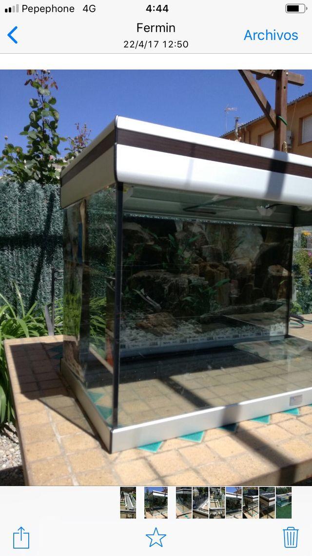 Acuario pecera aquatlantis