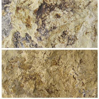 Piedra Escarfilado Travertino Amarillo 30X14