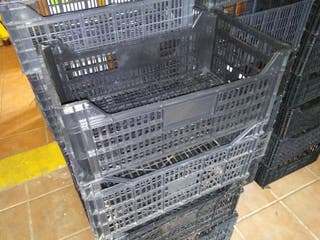 cajas de plastico 50 centimos la unidad
