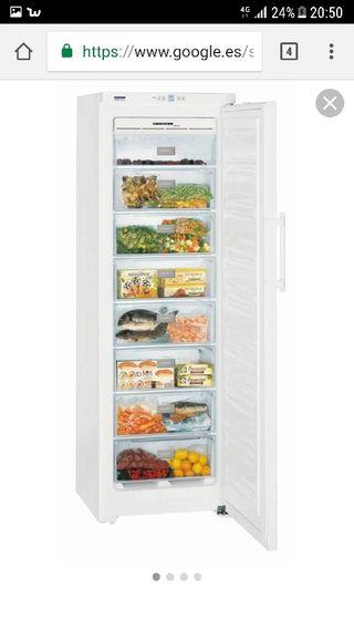 Congelador vertical Liebherr