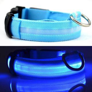 Collar LED P/PERROS