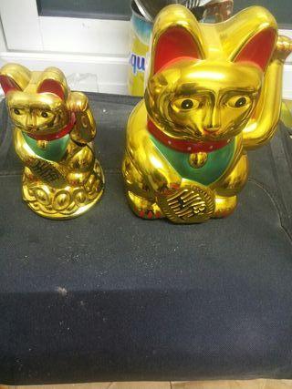 2 gatos chinos