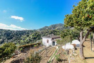 Casa en Ojen con terreno y arboles frutales