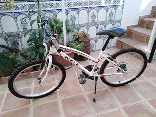 Bicicleta Niño Niña 10-14 años