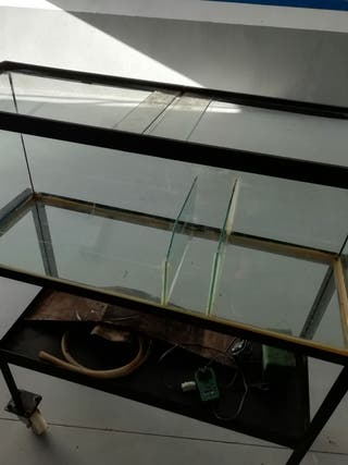pecera o tortuguera de cristal