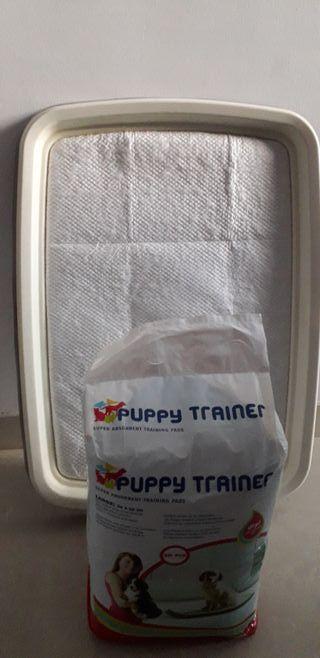 Bandeja de entrenamiento perros
