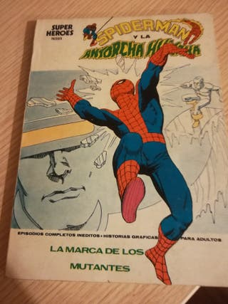 Spiderman super heroes vertice