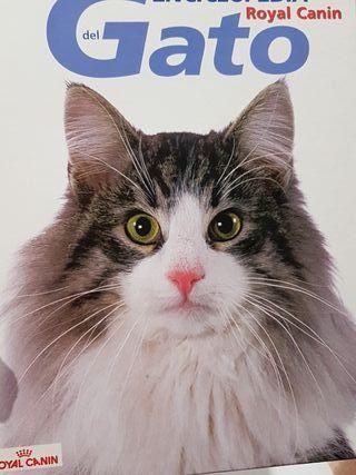 enciclopedia del gato tomo 1