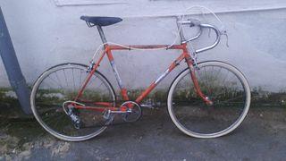 bicicleta carretera peliser