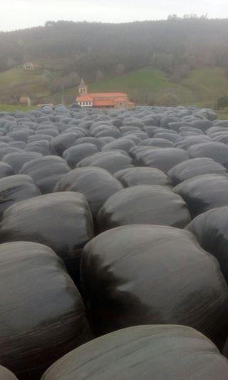 bolas de silo