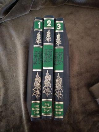 Coleccion Gran Enciclopedia Sarpe vol. 1,2 y 3