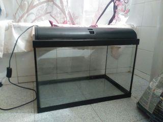acuario-pecera 80L