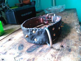 collar perro hecho a mano