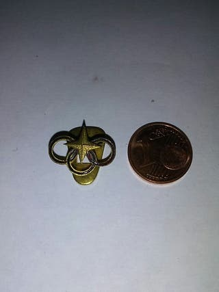 insignia falange rara