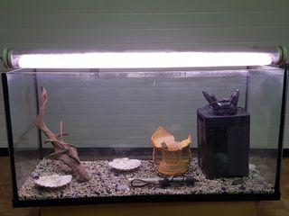 se vende acuario 200 l 1m x 40cm x 50cm