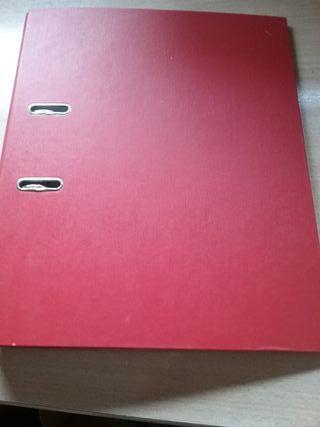 Archivadores / orden de documentos domésticos