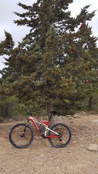 cuadro bici MTB Specialiced.