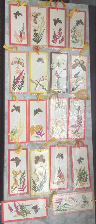 Colección de 18 tarjetas con mariposas y plantitas