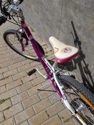 Bicicleta Trek de 24 pulgadas
