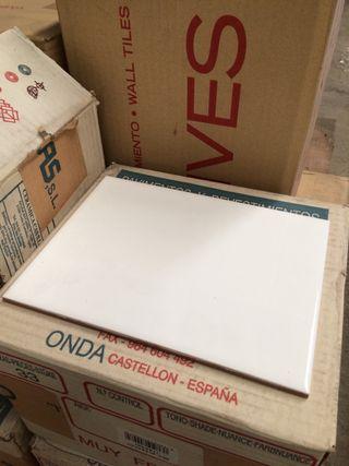 Azulejo blanco brillo pared 15x20