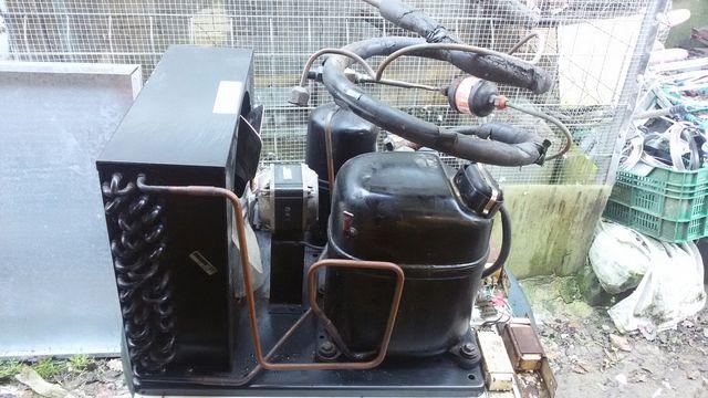 Motor frigorífico