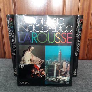 Diccionario Enciclopédico Larousse.