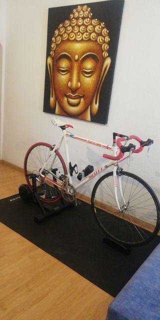 Rodillo Bkool + Bici + Simulador