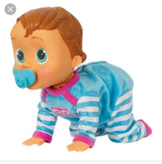 Peke Baby Lucas