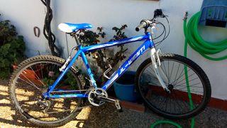 Bicicleta JL-Wenty