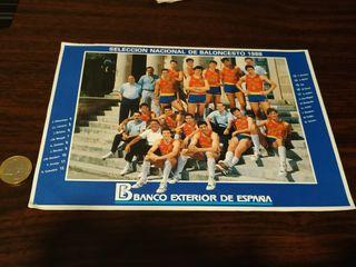 Pegatina Selección Baloncesto España 1988 Epi