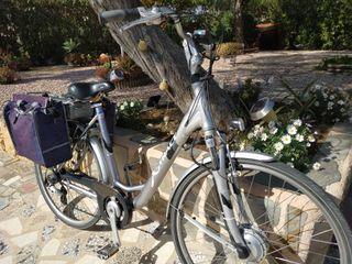 Bicicleta eléctrica holandesa