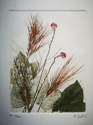 Grabado antiguo flores