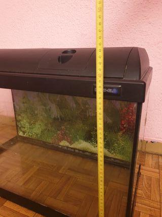acuario terrario