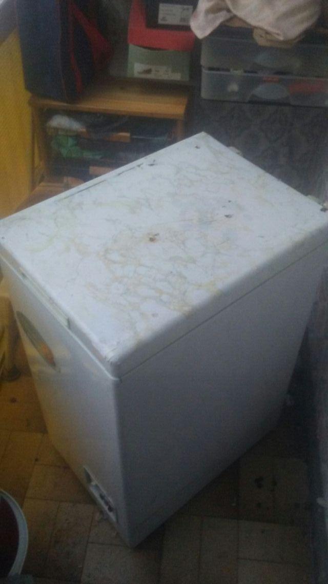 camara frigorifica